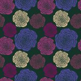 Vector seamless floral pattern with roses Stock Images