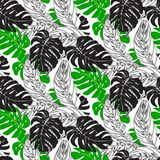 Jungle pattern with tropical leaves. Vector seamless floral pattern with various tropical leafs inspired by tropic nature and plants like palm tree and ferns in Royalty Free Stock Photos