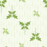 Vector seamless floral pattern. wallpaper Royalty Free Stock Images