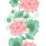 Vector seamless floral pattern. White background with geranium flowers. Seamless pattern. Illustration victorian style. Vintage. Vector. Designs for textiles Stock Image