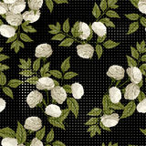 Vector seamless floral pattern with white roses on black backgro Royalty Free Stock Photo