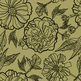 Vector Seamless Floral Pattern With Herbarium Royalty Free Stock Image