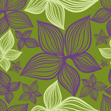 Vector Seamless Floral Pattern With Lilly Flower Stock Image