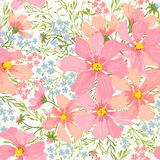 Vector seamless floral romantic pattern Royalty Free Stock Image