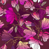 Vector seamless floral texture Royalty Free Stock Photos