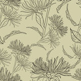 Vector seamless floral vintage pattern Stock Photo