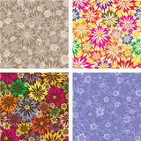 Vector seamless floral wallpaper Stock Photo