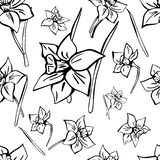 Hand drawn vector seamless floral pattern. Monochrome picture vector illustration