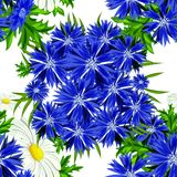 Vector seamless flower pattern Stock Images
