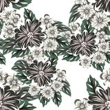 Vector seamless flower pattern Royalty Free Stock Photos