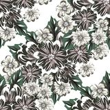 Vector seamless flower pattern Royalty Free Stock Photo