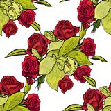 Vector seamless flower pattern. For cards, textiles, backgrounds Stock Photos
