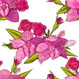 Vector seamless flower pattern. For cards, textiles, backgrounds Royalty Free Stock Image
