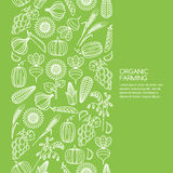 Vector Seamless Green Background With Vegetables And Cereal Grains Icons. Royalty Free Stock Photography