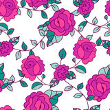 Vector seamless hand-drawn pattern with decorative rose flowers Stock Photos