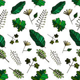 Vector Seamless Herbal Illustration with the Different Artistic Types of Green Leaves on the White Background Royalty Free Stock Image