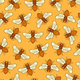 Vector seamless honey bee pattern Royalty Free Stock Image