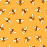 Vector seamless honey bee pattern Royalty Free Stock Photography