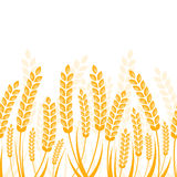 Vector seamless horizontal background with golden ripe ear of wh Stock Photo