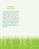 Vector seamless illustration of green grass Royalty Free Stock Photos