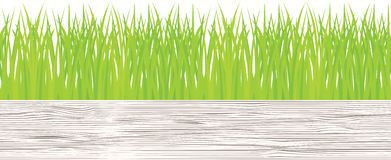 Vector seamless illustration of green grass Royalty Free Stock Image