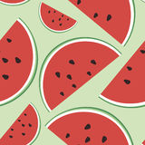 Vector seamless illustration of watermelon on a light green background. Stock Photos