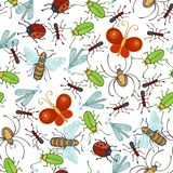 Vector seamless insects pattern. Stock Photos