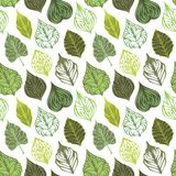 Vector seamless leaves pattern. Various ornate leaves on white background. Can be used for wrapping paper Royalty Free Stock Photo
