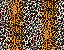 Vector. Seamless leopard pattern royalty free stock photos