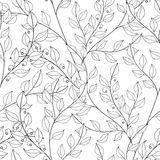 Vector Seamless Monochrome Floral Pattern. Hand Drawn Floral Texture, Decorative Flowers, Coloring Book Royalty Free Stock Image