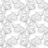 Vector Seamless Monochrome Fruit Pattern Royalty Free Stock Image