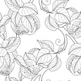 Vector Seamless Monochrome Fruit Pattern Royalty Free Stock Photography
