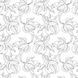 Vector Seamless Monochrome Fruit Pattern Stock Photography