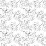 Vector Seamless Monochrome Fruit Pattern Stock Photography