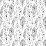Vector Seamless Monochrome Pattern with Doodle Feathers Royalty Free Stock Photos
