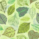 Vector seamless nature pattern. Various ornate leaves on light background Stock Photo