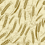 Vector seamless old grunge pattern with ripe ear of wheat. Stock Images