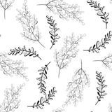 Vector seamless outline leaves pattern. Black and white background. Nature illustration royalty free illustration