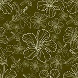 Vector seamless pattern Stock Photography