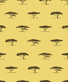 Vector seamless pattern of acacia tree silhouette. African tree Royalty Free Stock Image