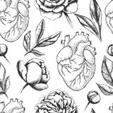 Vector seamless pattern with anatomical human heart and botanica Royalty Free Stock Images