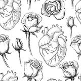 Vector seamless pattern with anatomical human heart and botanical roses. Hand drawn illustrations royalty free illustration