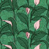 Vector seamless pattern with  anthurium flowers Stock Image