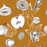 Vector seamless pattern of apples, peppers, onions and walnuts. Hand drawn vector illustration royalty free illustration