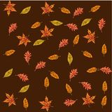 Vector seamless pattern with autumn leaves. Different leaves on a brown background. Colors of autumn nature for your design. Vector seamless pattern with autumn stock illustration