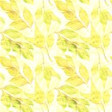 Vector seamless pattern with autumn leaves Stock Photos