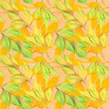 Vector seamless pattern with autumn leaves Stock Images