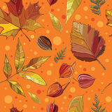 Vector seamless pattern with autumn set leaves, nuts, tree. Stock Image