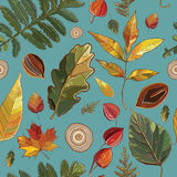 Vector seamless pattern with autumn set leaves, nuts, tree. Stock Images