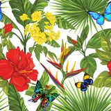 Vector seamless pattern, background with detailed butterflies royalty free illustration